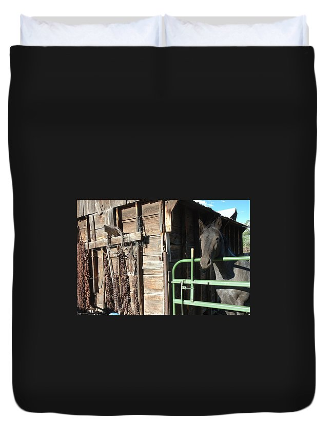 Horse Duvet Cover featuring the photograph Down On The Ranch by Jerry McElroy