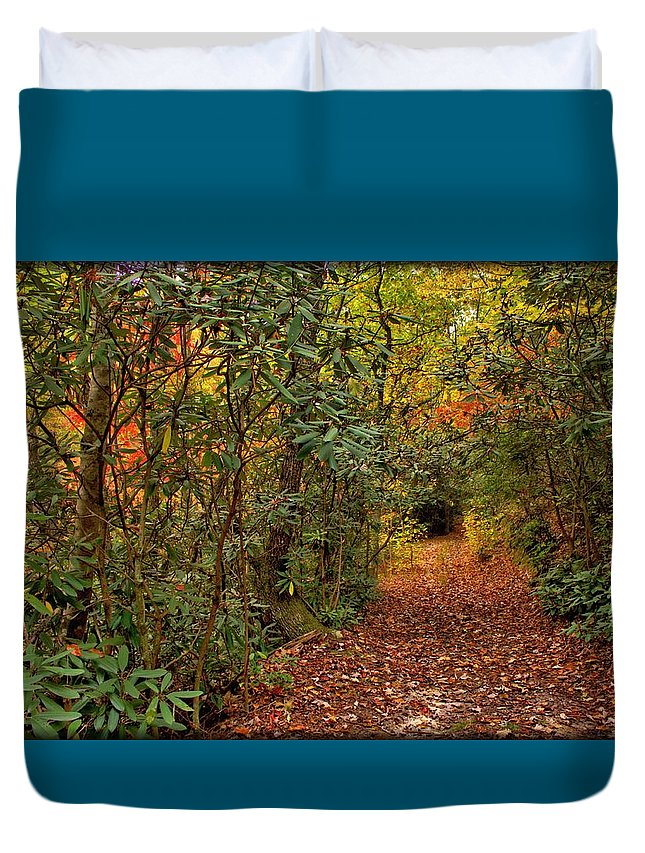 Mountain Trail Duvet Cover featuring the photograph Down The Mountain Path by Robin Ayers