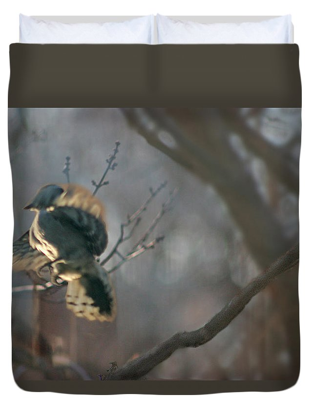 Nature Duvet Cover featuring the photograph Downey Woodpecker by Steve Karol