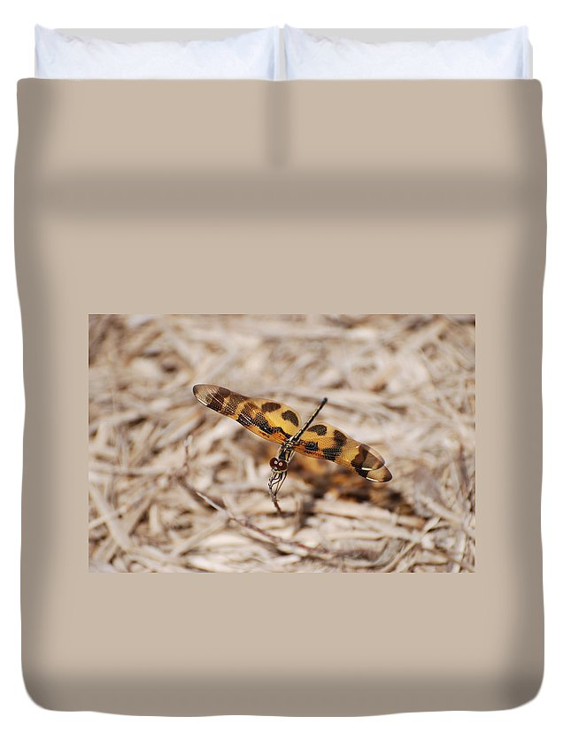 Nature Duvet Cover featuring the photograph Dragon Fly by Rob Hans