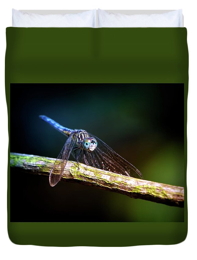 Dragonfly Duvet Cover featuring the photograph Dragonfly Beauty by Mark Andrew Thomas