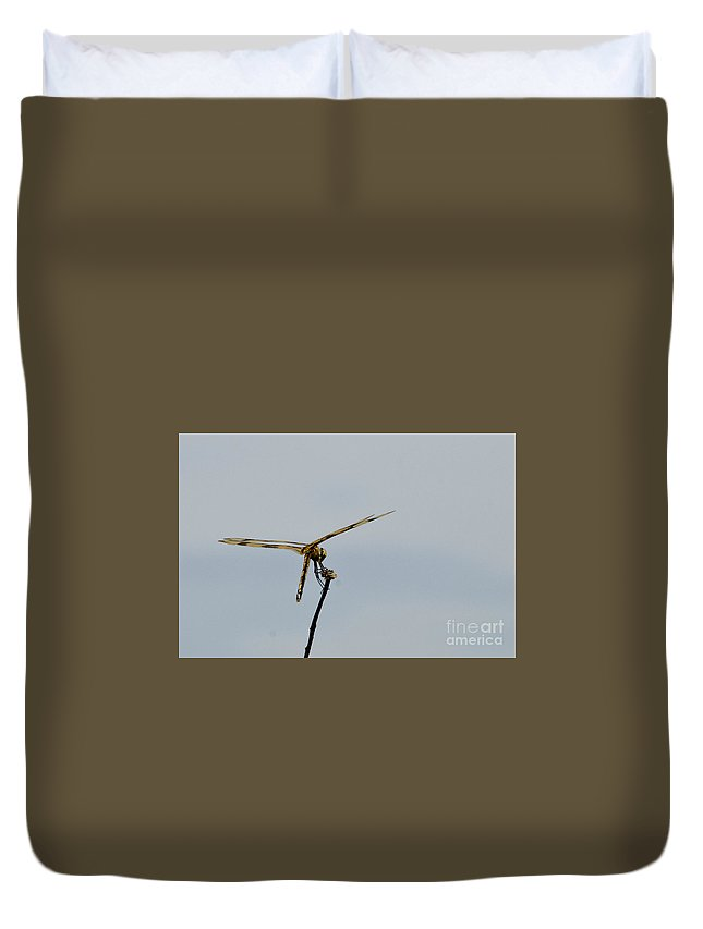Dragonfly Duvet Cover featuring the photograph Dragonfly by Bernd Billmayer