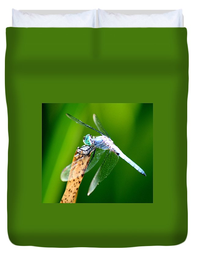 Dragonfly Duvet Cover featuring the photograph Dragonfly Blue by Chris Brannen