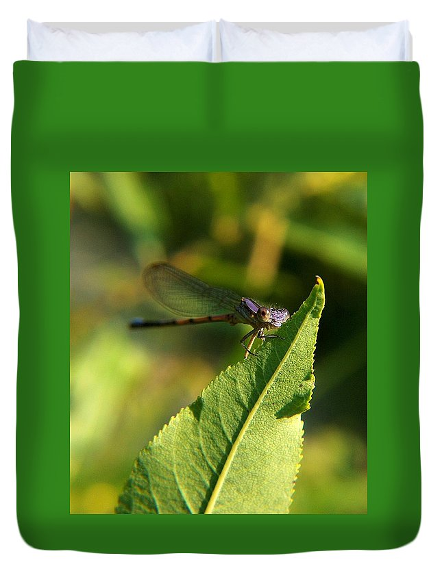 Digital Art Duvet Cover featuring the photograph Dragonfly Called Funny Face by Belinda Cox