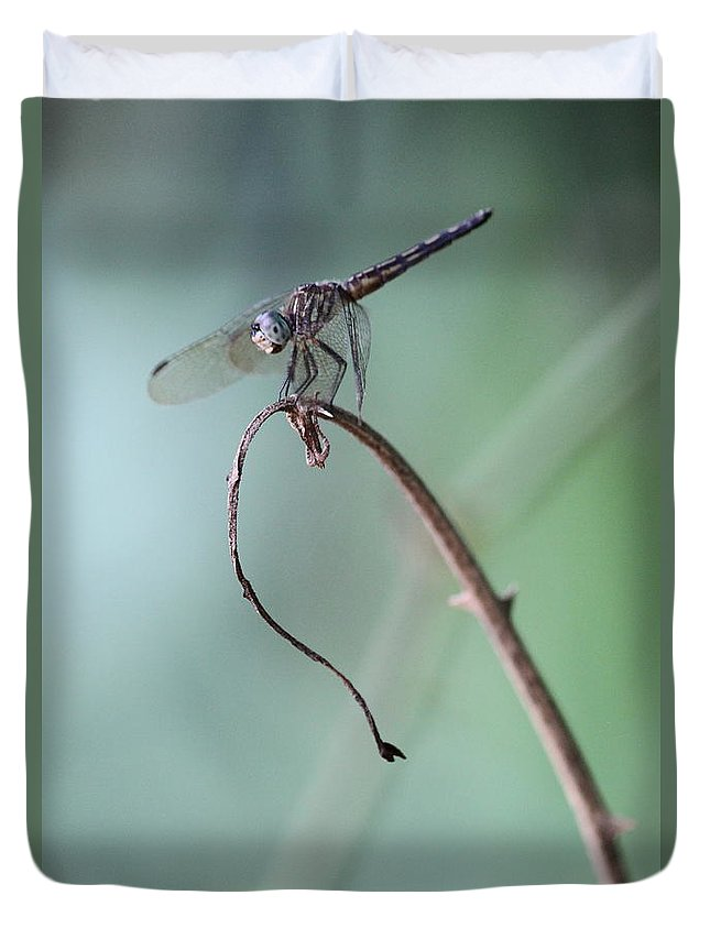 Dragonfly Duvet Cover featuring the photograph Dragonfly by Jim Clark