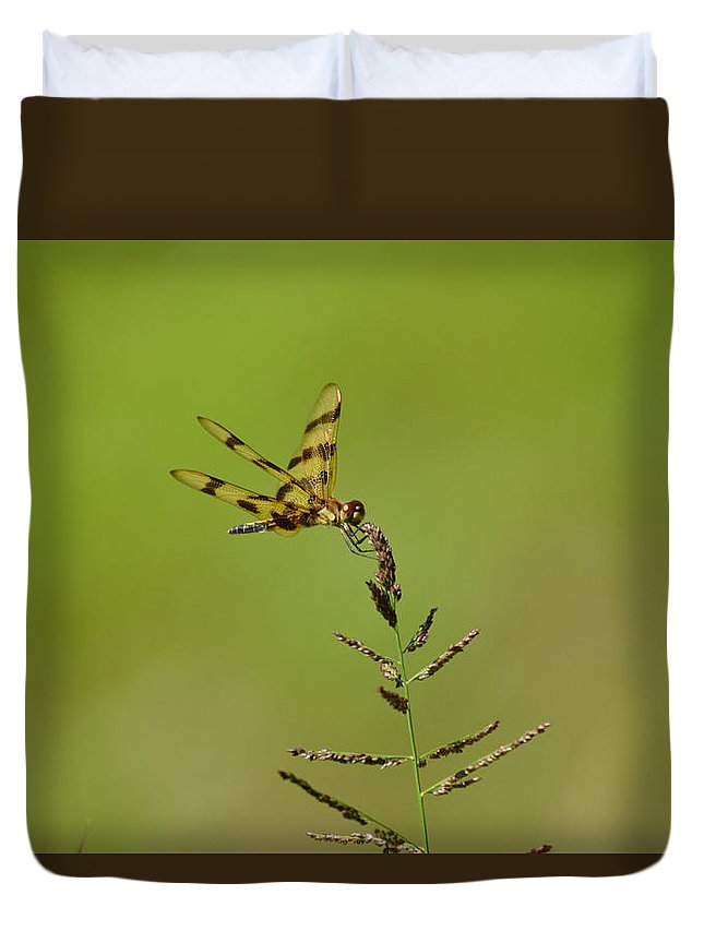 Green Duvet Cover featuring the photograph Dragonfly by Kari McDonald