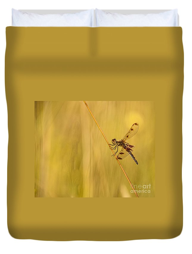 Dragonfly Duvet Cover featuring the photograph Dragonfly Pole Dance by Christina VanGinkel