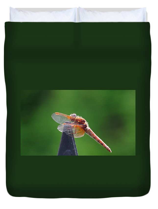 Dragonfly Duvet Cover featuring the photograph Dragonfly Red by Kat J
