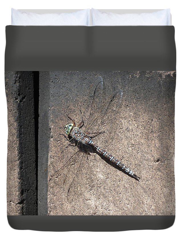 Insect Duvet Cover featuring the photograph Dragonfly by Creations by Shaunna Lynn