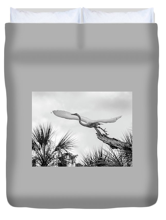 Great White Egret Duvet Cover featuring the photograph Dragonfly Wing Man Bw by Norman Johnson