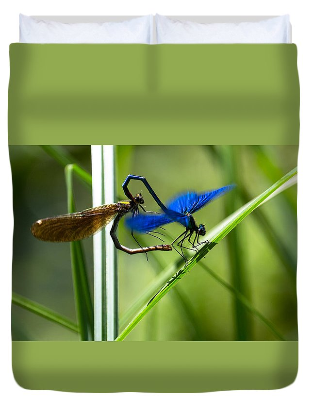Dragoonfly Duvet Cover featuring the photograph Dragoonfly by Peteris Vaivars