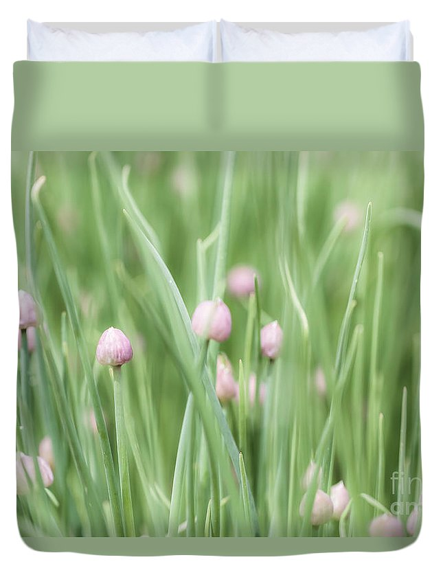 Colorado Duvet Cover featuring the photograph Dreaming by Ashley M Conger