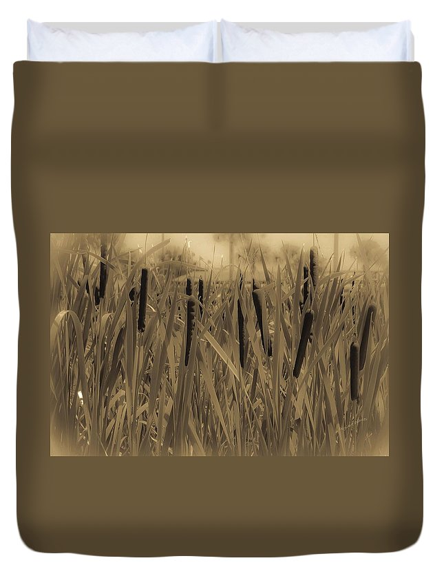 Cattails Duvet Cover featuring the photograph Dreaming Of Cattails by DigiArt Diaries by Vicky B Fuller