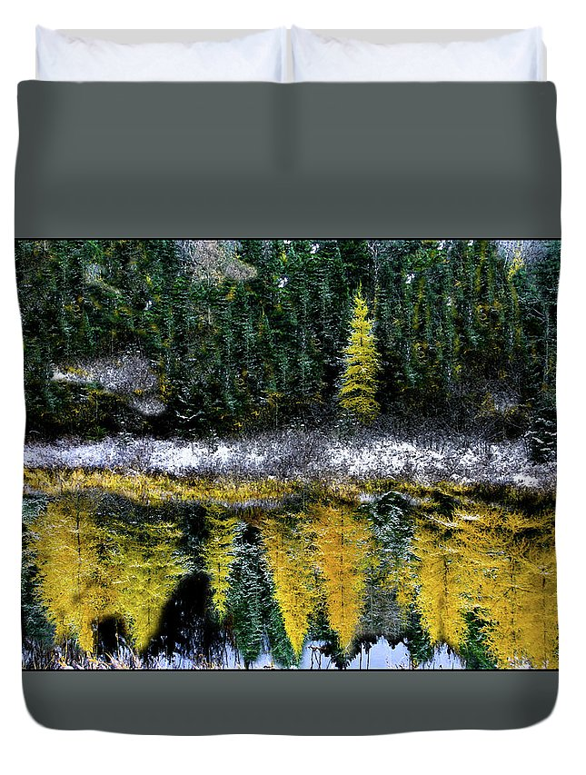 Mindscape Duvet Cover featuring the photograph Dreams Of A Young Tamarack by Wayne King
