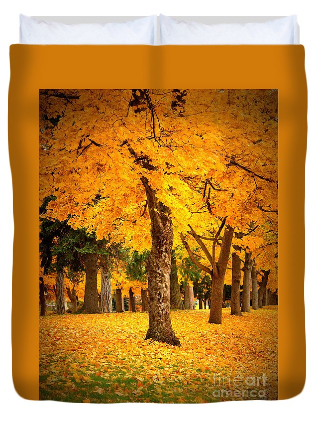 Warm Colors Duvet Cover featuring the photograph Dreamy Autumn Day by Carol Groenen