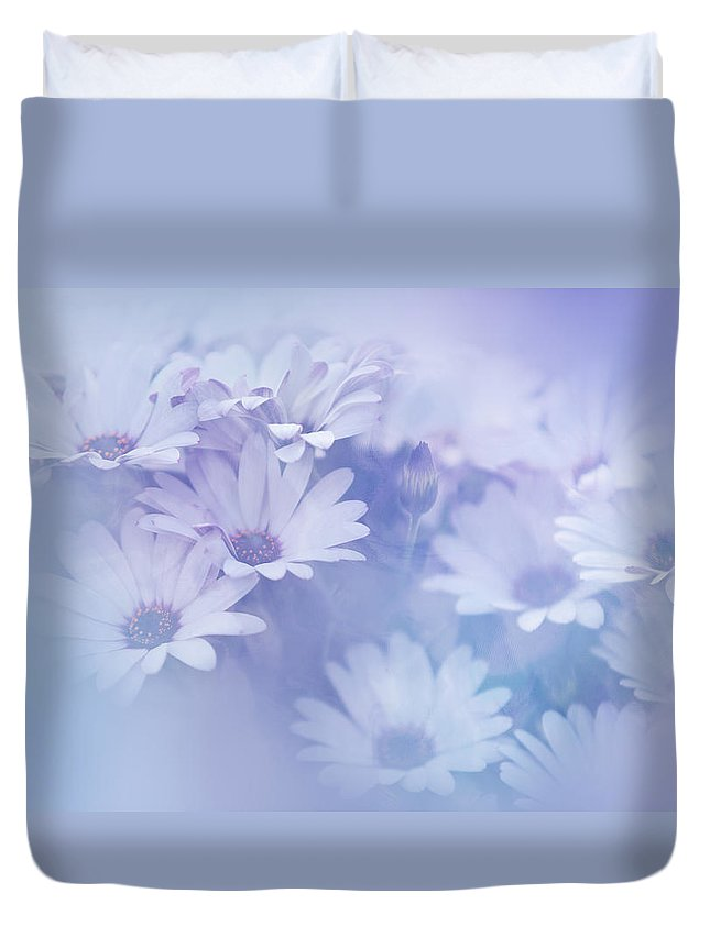 Daisy Duvet Cover featuring the photograph Dreamy Daisies by Jenny Rainbow