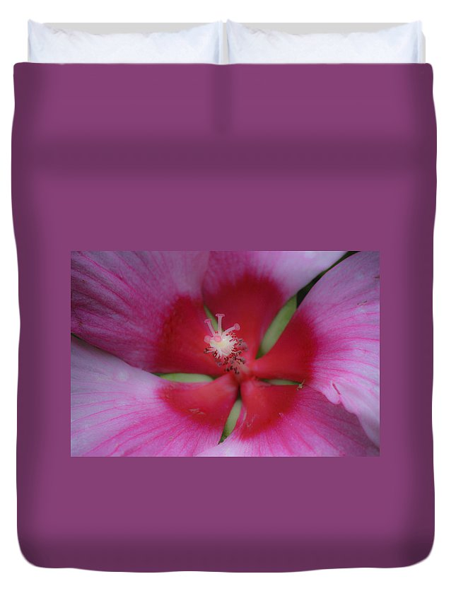 Hibiscus Duvet Cover featuring the photograph Dreamy Hibiscus by Teresa Mucha