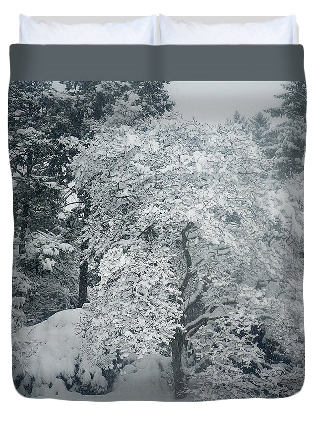 Arboretum Duvet Cover featuring the photograph Dressed In Lace by Mary Konczyk