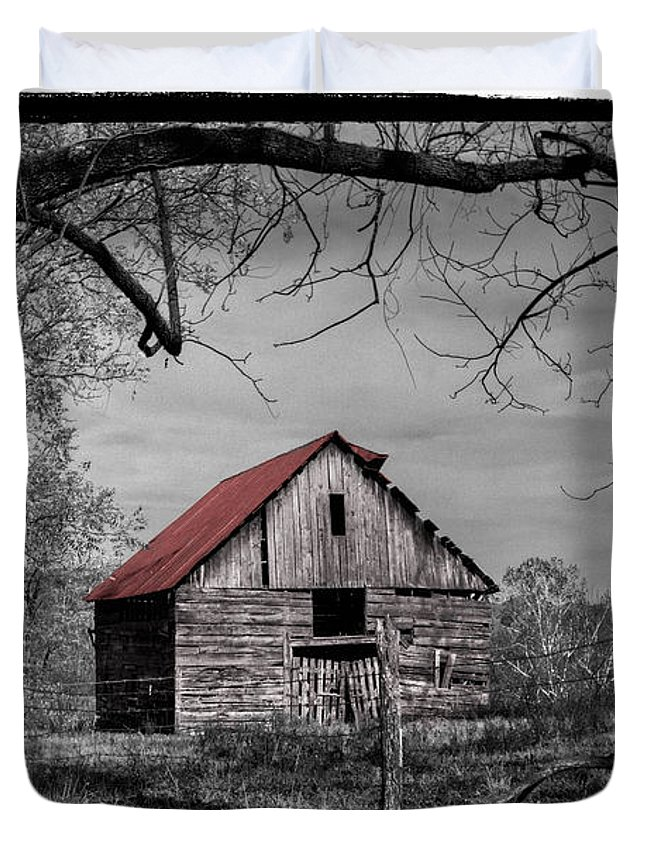 Andrews Duvet Cover featuring the photograph Dressed In Red by Debra and Dave Vanderlaan