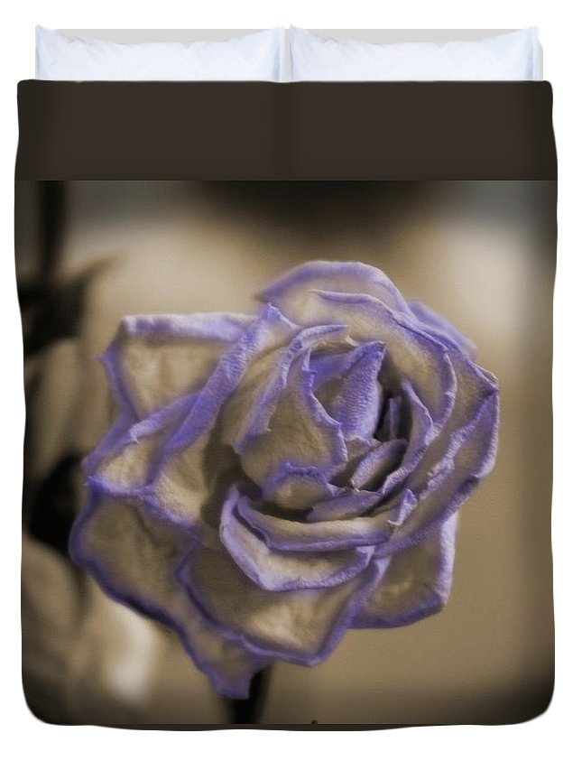 Sepia Duvet Cover featuring the photograph Dried Rose In Sienna And Ultra Violet by Colleen Cornelius