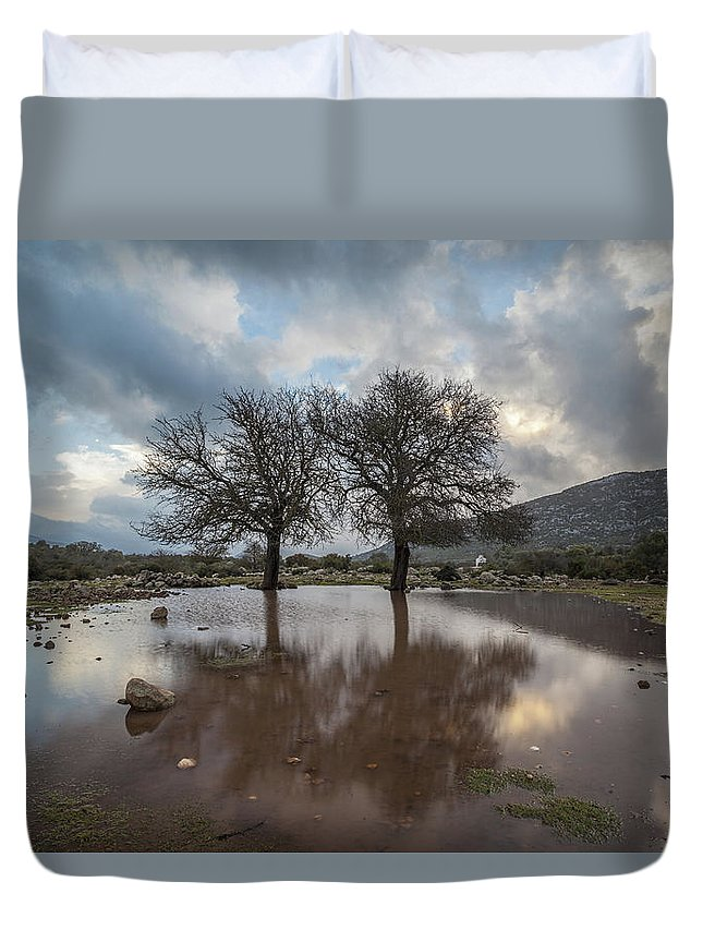 Scenery Duvet Cover featuring the photograph Dried Tree Reflected by Daniele Fanni