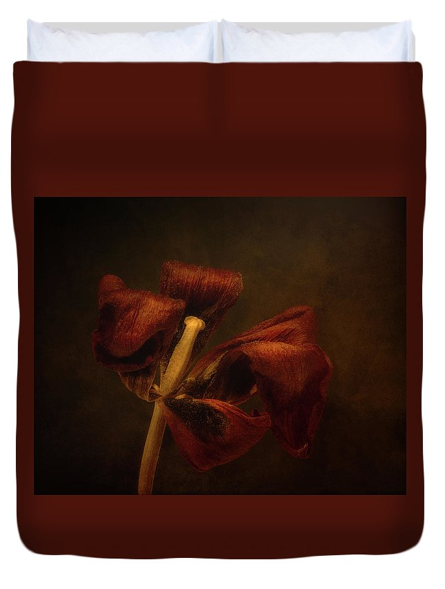 Tulip Blossom Duvet Cover featuring the photograph Dried Tulip Blossom 2 by Scott Norris