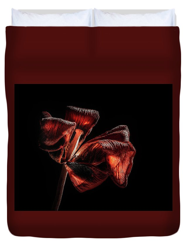 Tulip Blossom Duvet Cover featuring the photograph Dried Tulip Blossom by Scott Norris
