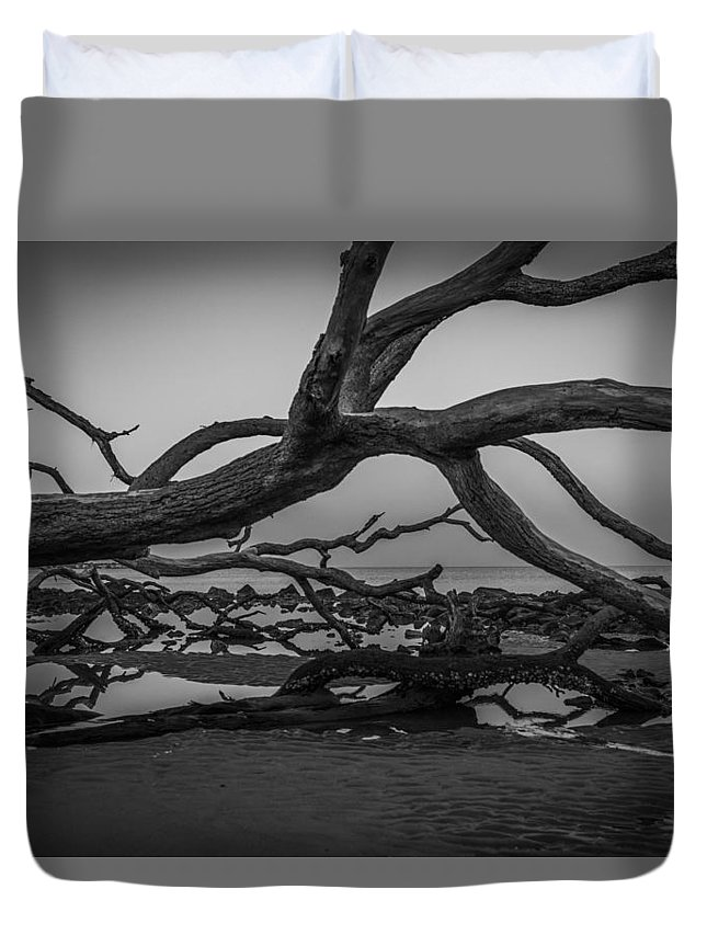Nature Duvet Cover featuring the photograph Driftwood Beach 4 by Brandon Falls