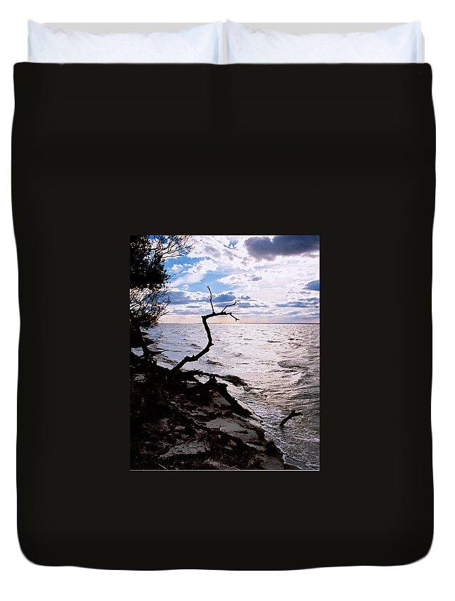 Barnegat Duvet Cover featuring the photograph Driftwood Dragon-barnegat Bay by Steve Karol