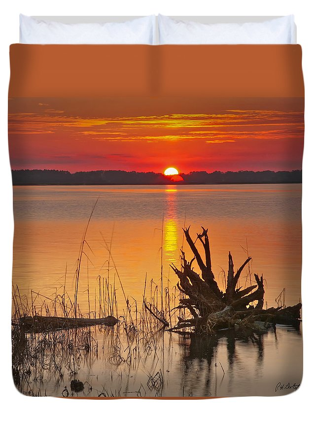 Canvas Duvet Cover featuring the photograph Driftwood by Phill Doherty