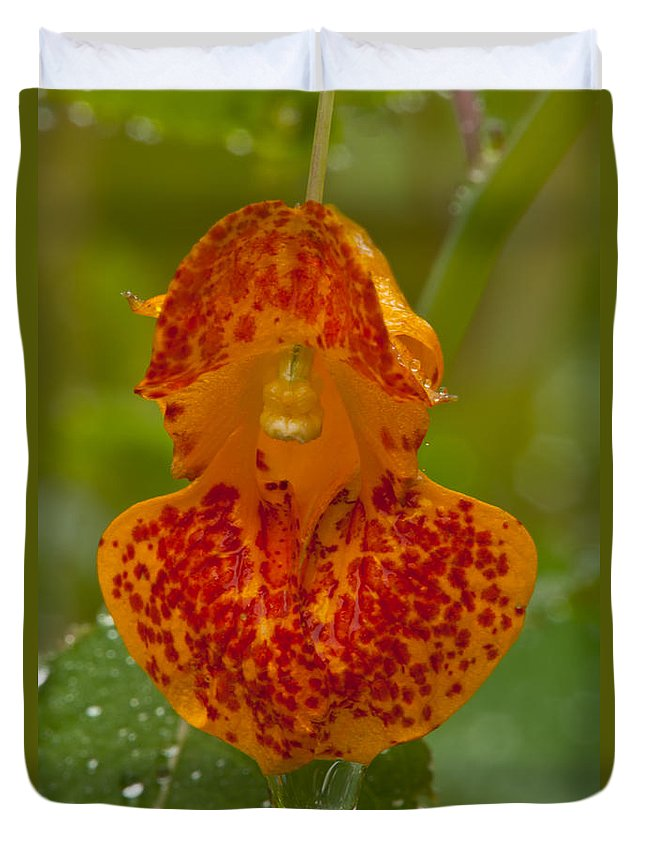 Wildflowers Duvet Cover featuring the photograph Dripping Wet #2 by Irwin Barrett