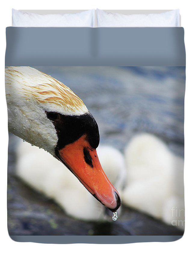 Swan Duvet Cover featuring the photograph Drippy Nose by Alyce Taylor