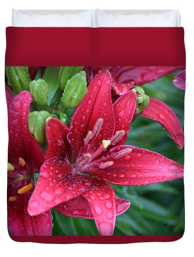 Rain Duvet Cover featuring the photograph Dropplet Lilly by Melissa Carter