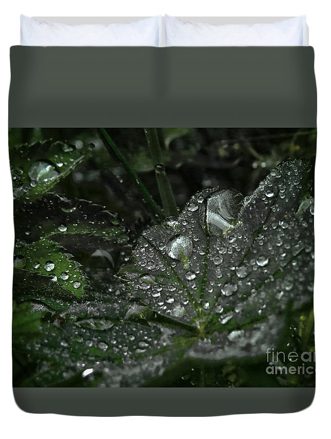 Abstract Duvet Cover featuring the photograph Drops And Leaf by Ulisse Bart