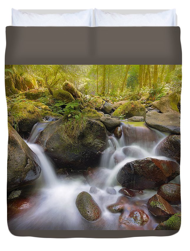 Dry Creek Duvet Cover featuring the photograph Dry Creek II by David Gn