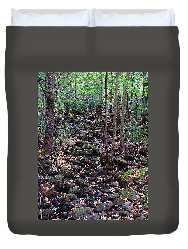 River Duvet Cover featuring the photograph Dry River Bed- Autumn by Nancy Mueller