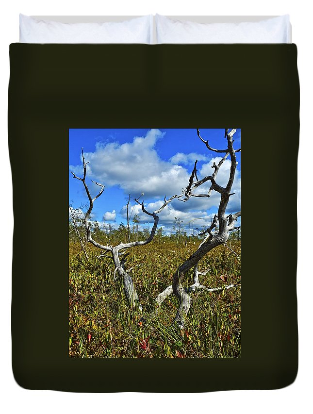 Attractive Duvet Cover featuring the photograph Dry Tree by Vadzim Kandratsenkau