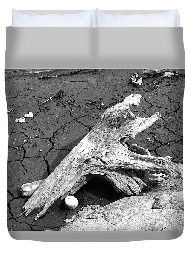 Dry Dead Piece Of Wood Duvet Cover featuring the photograph Dry Wood On Barren Land by Vineta Marinovic