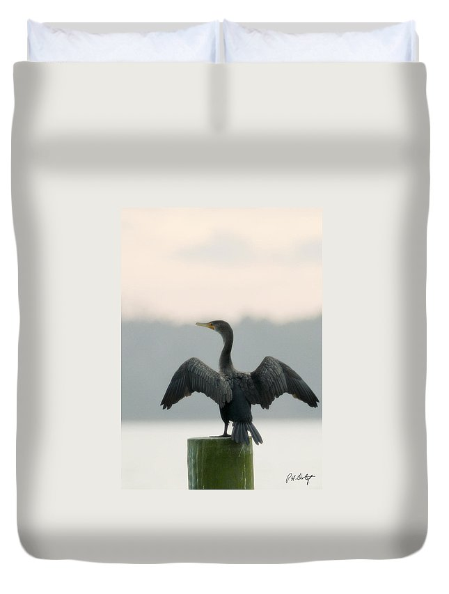 Bird Duvet Cover featuring the photograph Drying Out by Phill Doherty