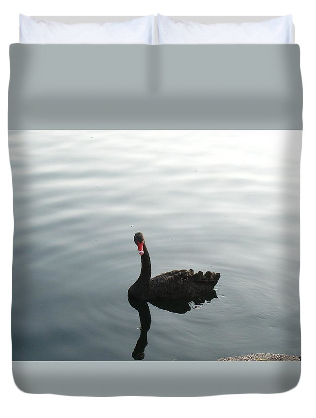 Duck Duvet Cover featuring the photograph Duck Down by James Benderson