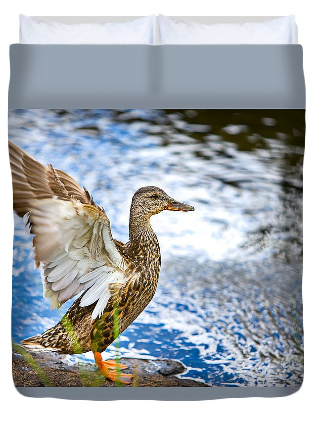 Lake Duvet Cover featuring the photograph Duck by James O Thompson
