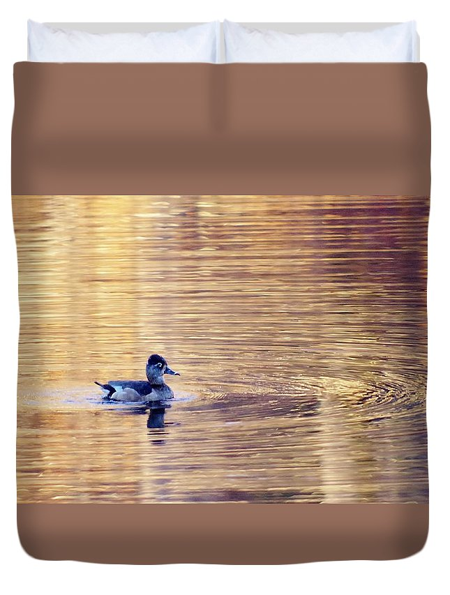 Duck Duvet Cover featuring the photograph Duck Pond 3 by Buddy Scott