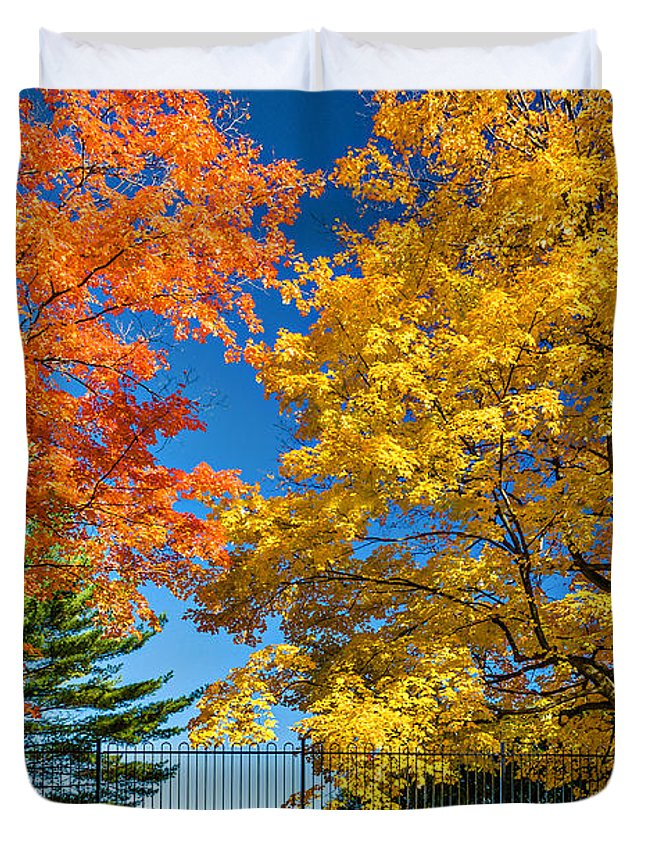 Maples Duvet Cover featuring the photograph Dueling Maples by Steve Harrington