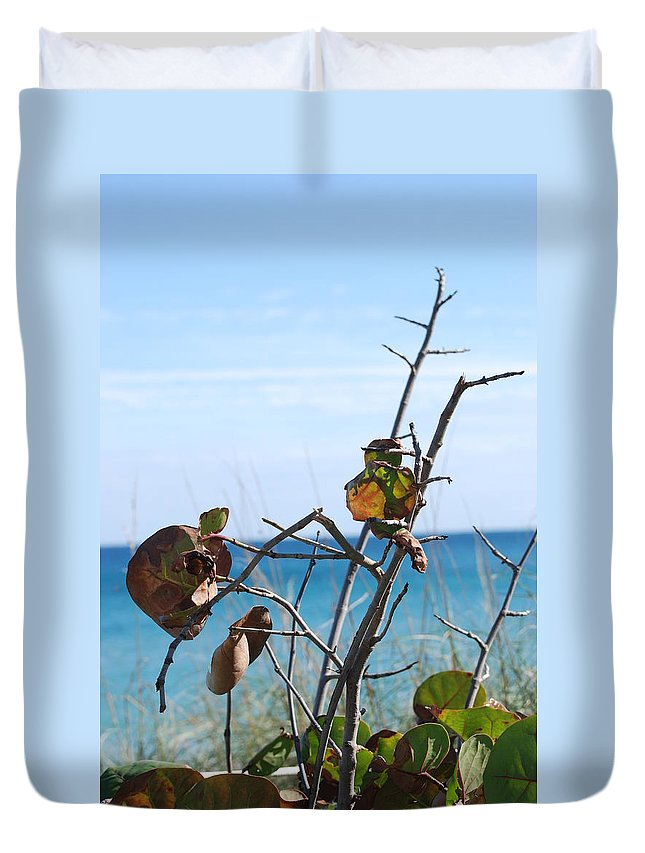 Ocean Duvet Cover featuring the photograph Dune Plants by Rob Hans