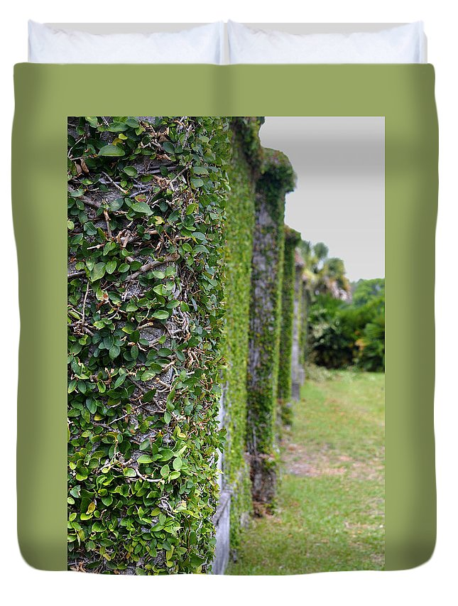 Cumberland Island Duvet Cover featuring the photograph Dungeness Ivy Wall by Debra White