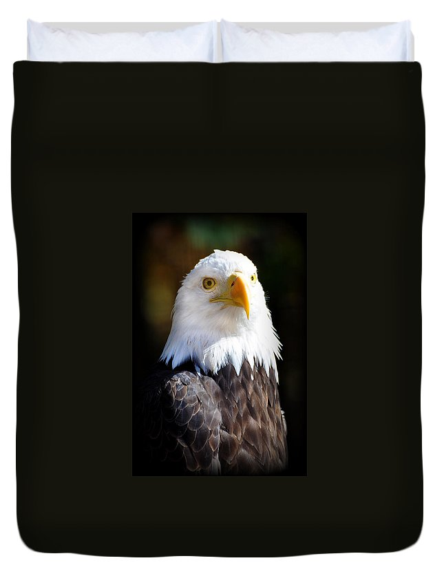 Eagle Duvet Cover featuring the photograph Eagle 14 by Marty Koch