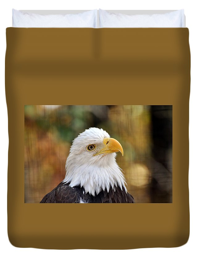 Eagle Duvet Cover featuring the photograph Eagle 6 by Marty Koch