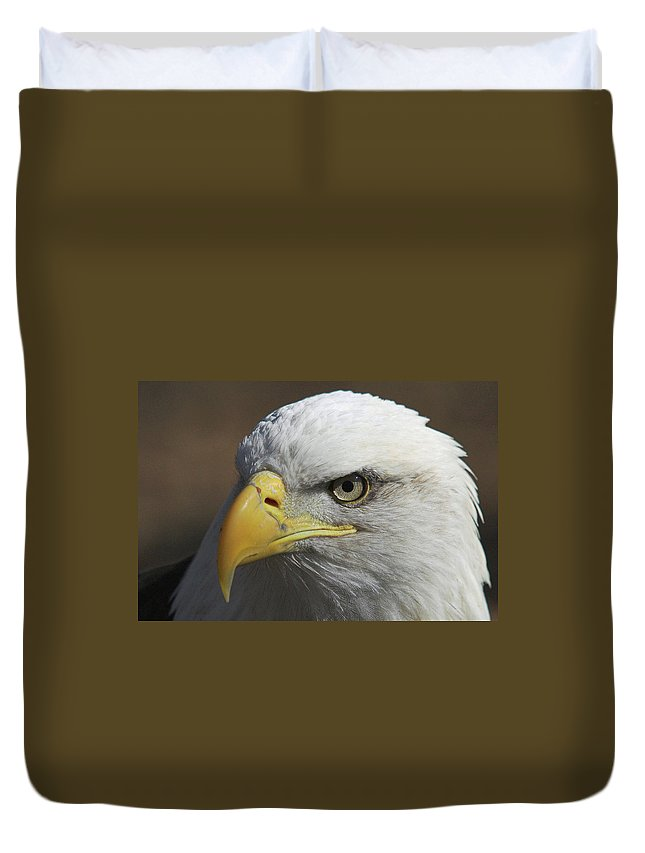 Eagle Duvet Cover featuring the photograph Eagle Eye by Steve Stuller