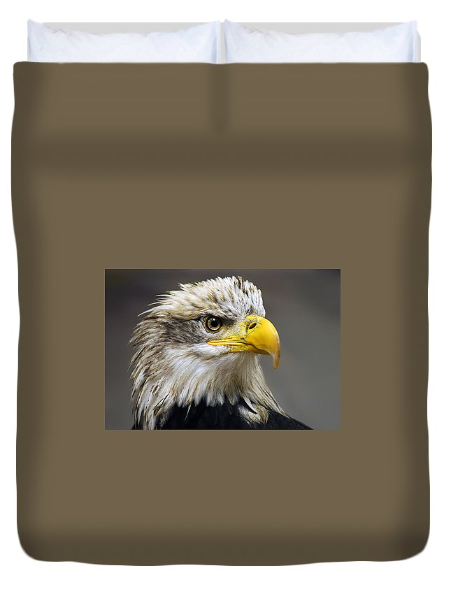 Eagle Duvet Covers