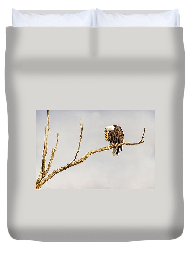 Eagle Duvet Cover featuring the photograph Eagle Nail Biting by James BO Insogna